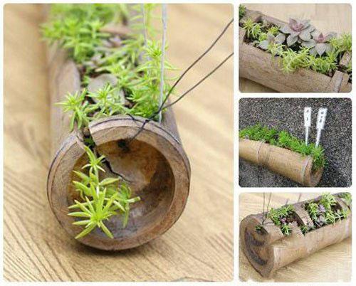 废物利用手工制作竹筒花盆 汽水瓶塑料花盆